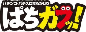 pachigabu_logo2