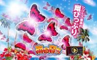 『パチスロ南国育ち~蝶々ver~』のPV&サイトが公開!